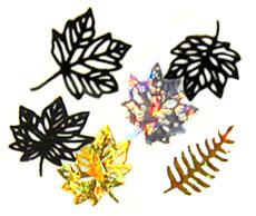 Herbst / Blätter