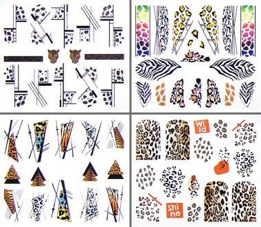 Animal Designs XXL, 12 in 1